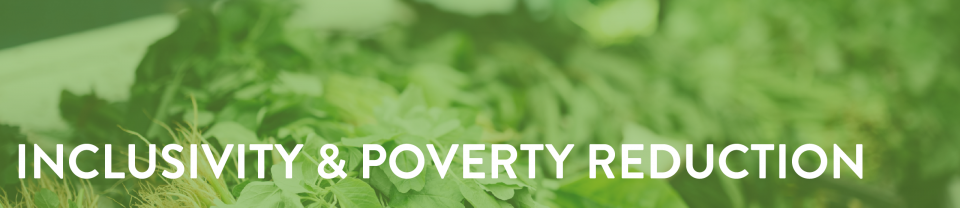 Inclusivity and poverty reduction