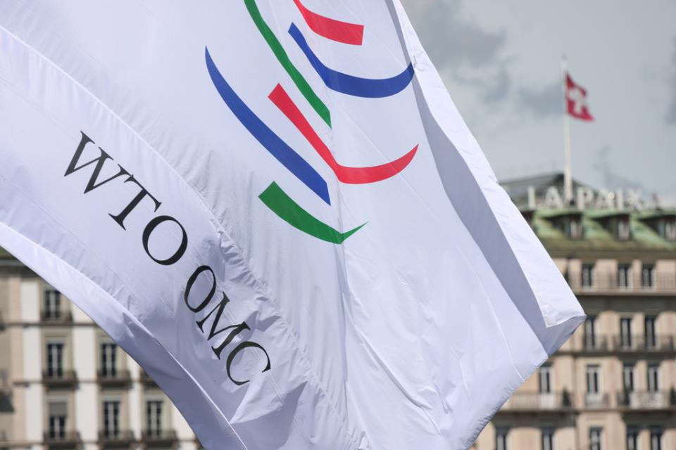 Wto And Green Economy Page